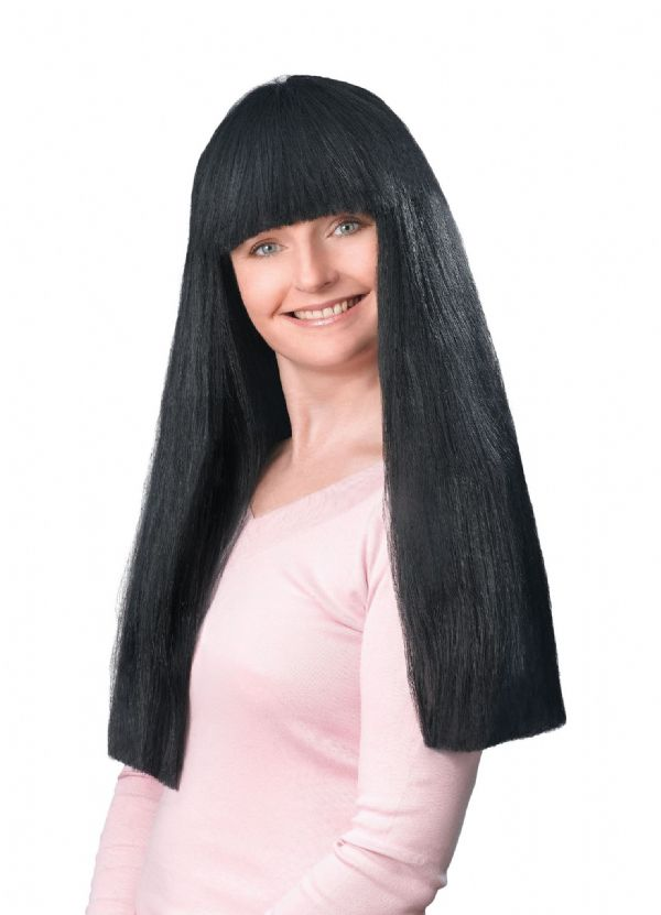 "Ladies Hippie Fringe 24"" Black Budget Wig Hippy 60s 70s Fancy Dress"